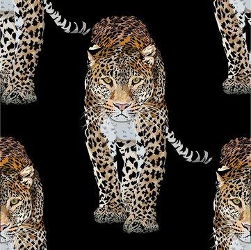 Vector sketch of walks leopard.Seamless leo pattern.Animal print.Wildlife.