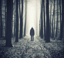 Keuken foto achterwand Grijze traf. woman in the forest. man walks in a foggy forest. morning fog in a golden autumn forest