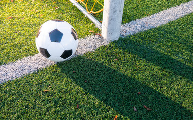 Shot from the ground. The ball on the soccer goal line. Green grass, white line, colorful net from the football gate, shadows, bright sun.