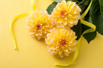 黄色のダリアと黄色リボンと黄色い背景