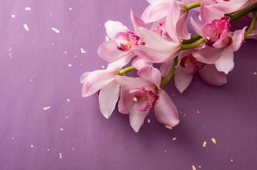 ピンク色のシンビジウムと和紙の背景