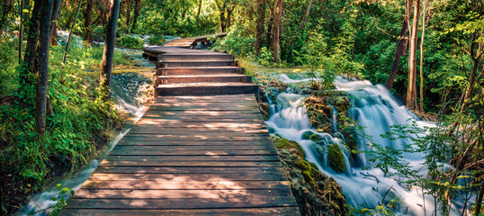Canvas Prints Road in forest Panoramac view of wooden pathway in the deep green forest. Picturesque summer scene of Krka National Park, Croatia, Europe. Beautiful world of Mediterranean countries.