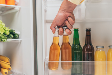 cropped view of man taking bottles of beer out from open fridge with fresh food on shelves