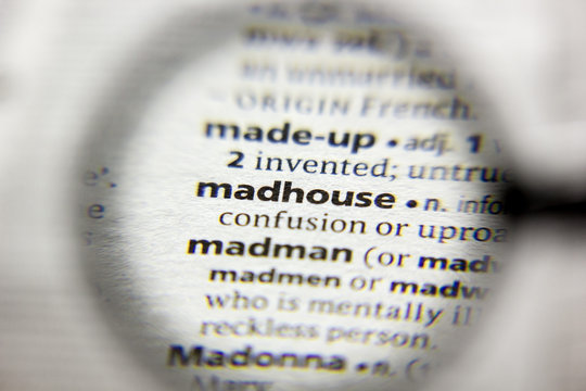 The word or phrase Madhouse in a dictionary.
