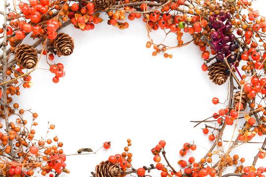 frame of wild plants wreath in autumn