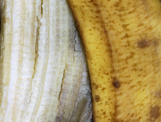 Close-up texture of a banana peel