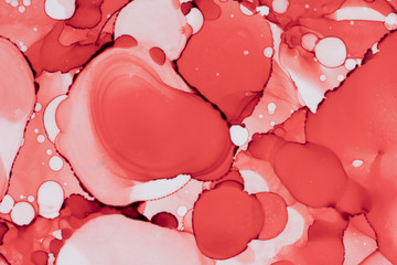 Abstract coral color fluid background