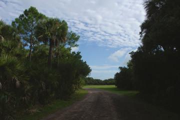 Pinckney Island Trail
