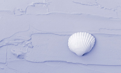 Isolated seashell on a purple background. Close-up of shell