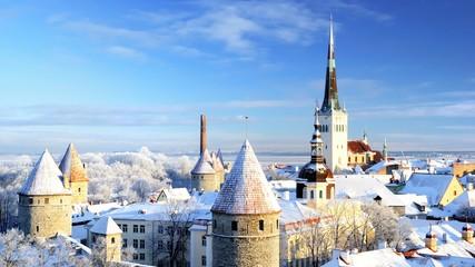 Tallinn city. Estonia. Snow on trees in winter Fototapete