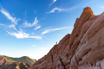 Poster Deep brown running red rocks in the desert