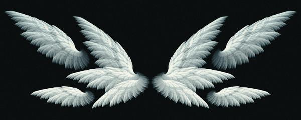 fantasy angel wings Wall mural