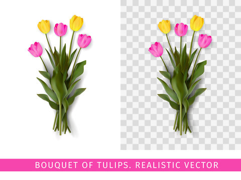 Bouquet of pink and yellow tulips on a transparent background