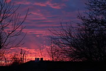 Poster Crimson sunset in park
