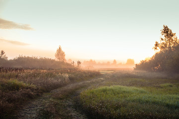 Foto op Plexiglas Cappuccino Misty daybreak in the village. Road in the field