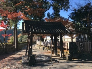 Temple in Japan with Autumn Leaves