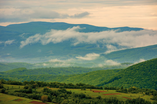clouds rising above the hills. mountainous countryside of carpathians. fog evaporate from the green forest just after it rains. overcast windy sunrise in springtime.