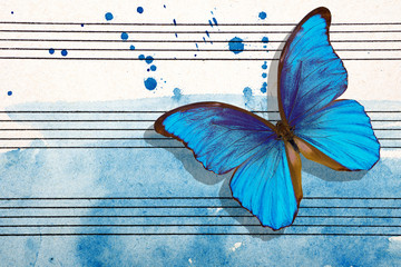 Foto auf AluDibond Schmetterlinge im Grunge Morpho blue butterfly and notes. Butterfly melody. Photo of old music sheet in blue watercolor paint. Blues music concept. Abstract blue watercolor background. copy spaces