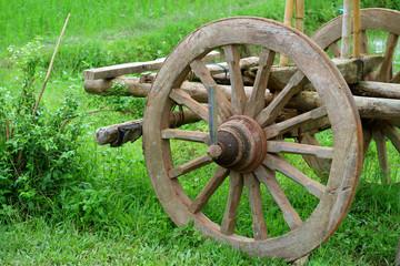The wooden wheel of an old bullock cart in the green field Fototapete