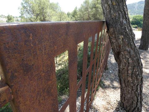 árbol sobre valla
