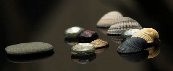 Seashells ,glass stones, marbels, colorful home decoration on black back ground