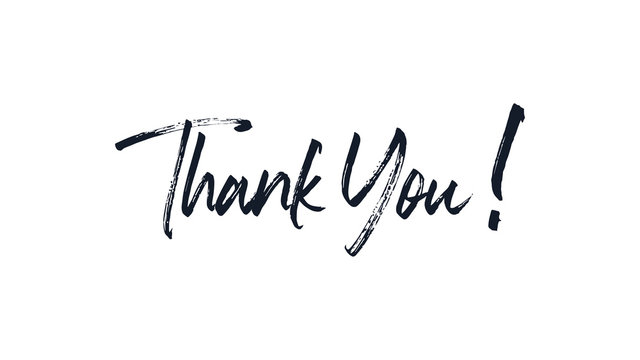Thank You Text Lettering Handwritten Brush Calligraphy isolated on white background. Greeting Card Vector Illustration