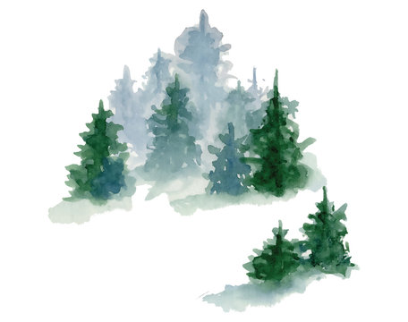 Watercolor pine trees illustration isolated on white background