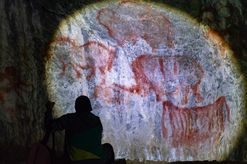 cave paintings in the cave of ancient animals