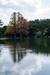 秋の服部緑地・山ヶ池の風景