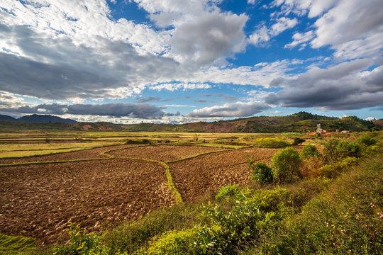 Rice fields landscape, Andasibe, Madagascar