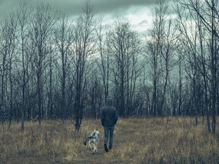 Man and wolf dog going to forest with cloudy sky