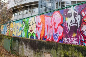 Wall graffiti & street art, Lyon, France