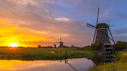 Wall Mural - Row of historic wooden windmills