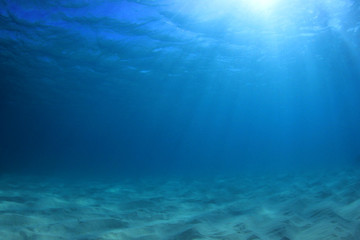 Poster Bleu nuit Underwater ocean background