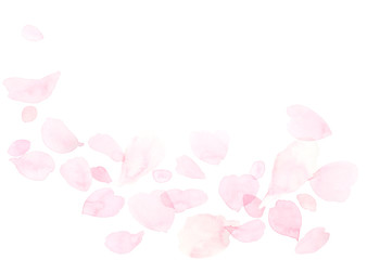 Spoed Fotobehang Kersenbloesem ふわふわしたピンクの花びら