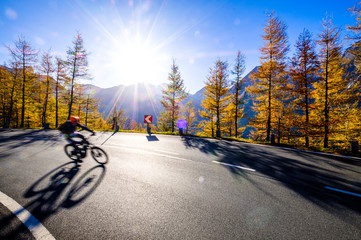 Wall Mural - cyclist at the grossglockner mountain