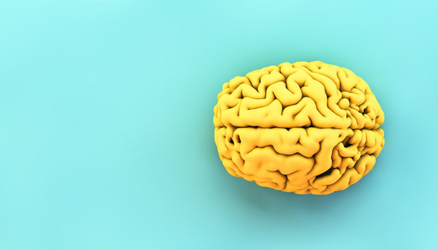 minimal yellow brain
