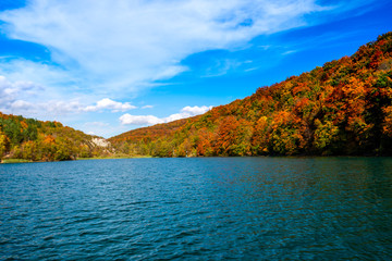 Poster Groen blauw Autumn landscape near the lake