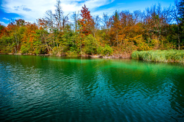 Foto op Plexiglas Groen blauw Autumn landscape near the lake
