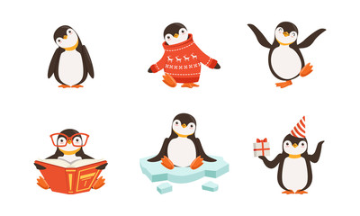 Cute Penguin Cartoon Characters Vector Set. Arctic Creature Wearing Sweater