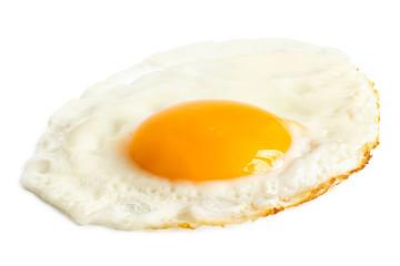Printed kitchen splashbacks Egg Single fried egg.