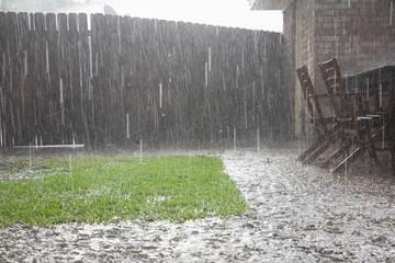 Obraz Heavy Rains In Backyard - fototapety do salonu