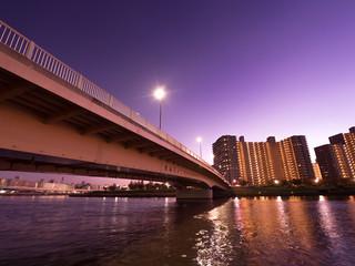 Fotomurales - 隅田川と千住汐入大橋