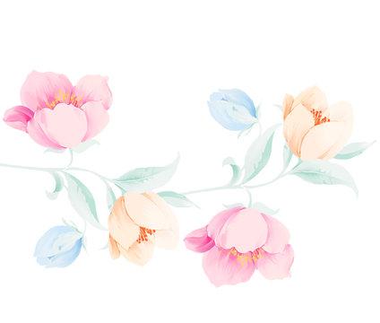 Elegant beautiful watercolor rose flower