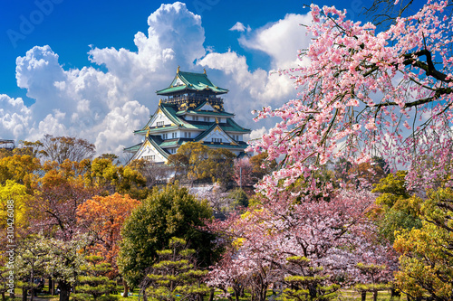 Wall mural Cherry blossoms and castle in Osaka, Japan.