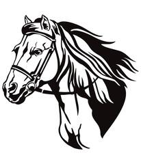 Vector decorative horse 9