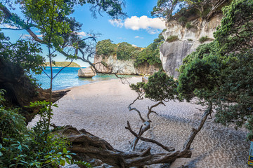 View on Cathedral cove beach and Smiling Sphinx Rock without people in summer