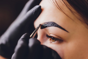 beautician- makeup artist applies paint henna on previously plucked, design, trimmed eyebrows in a beauty salon in the session correction. Professional care for face.