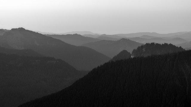 Vista View at Mount Ranier National Park in Washington State