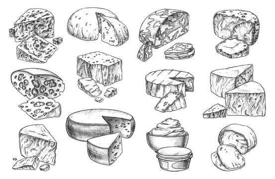 Sketch icons of cheese sorts, whole and slices